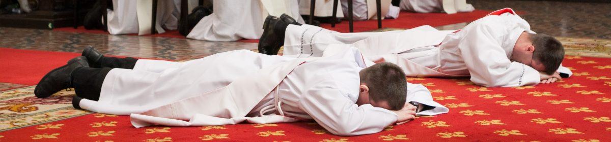 Primice diecézních kněží v ČR